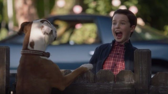 Young Sheldon - Staffel 2